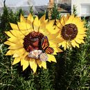 Sunflower Garden Sculpture With Orange Butterfly