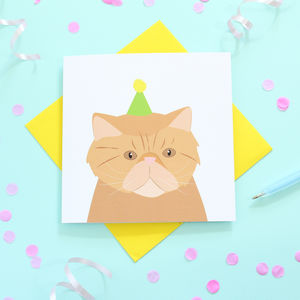 Persian Cat, Birthday Card