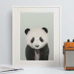 Panda Peekaboo Animal Print - animals & wildlife
