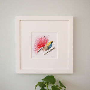 Count Raggi's Bird Of Paradise Print - what's new