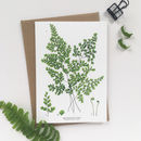 Botanical Maidenhair Fern Greeting Card