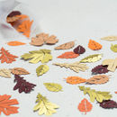 Autumn Wedding Confetti