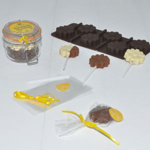 Make Your Own Personalised Chocolate Lollipops: Flowers - lollipops