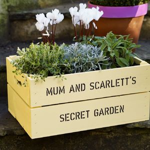 Personalised Large Mother's Day Crate - pots & planters