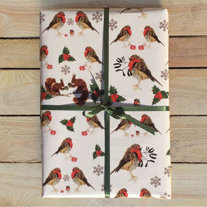 Two Sheets Of Robin Wrapping Paper
