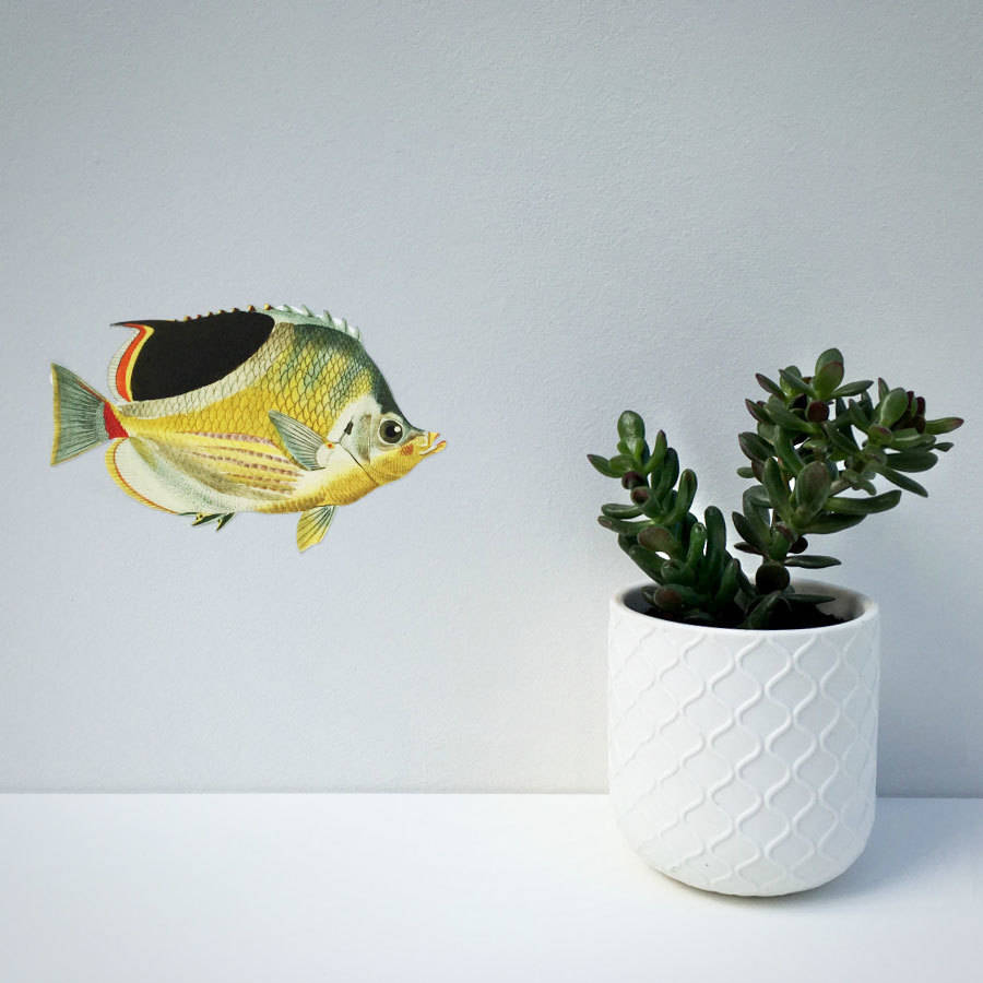 tropical fish wall sticker by chameleon wall art