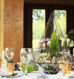 Wedding Centre Piece Terrarium With Live Plants