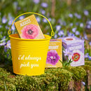 Personalised Grow Your Own Birth Flower Bucket Gift