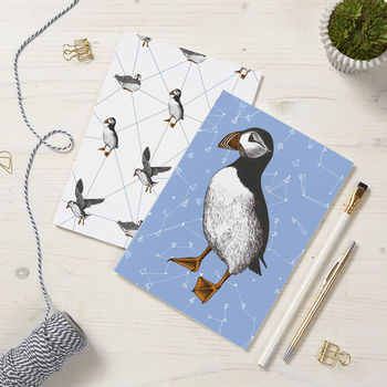 Puffin Notepads 2pck