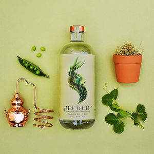 Non Alcoholic Seedlip Garden And Tonic Gift Pack - gifts for mums-to-be
