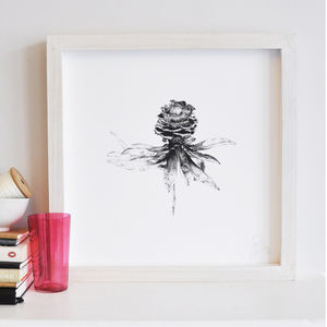 Protea Flower Print Two - summer sale