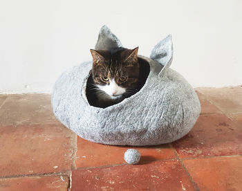 Grey cat bed with ears