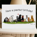 Dog Card Pawfect Birthday A5