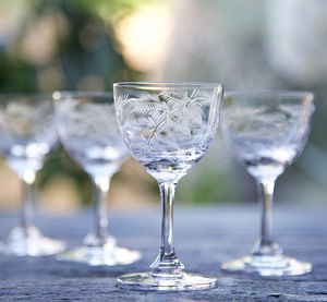 Set Of Six Fern Design Liqueur Glasses - shot glasses