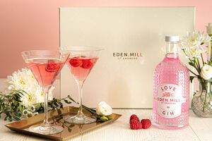 Love Gin Martini Gift Set