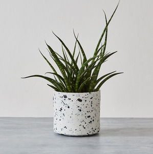Handmade Porcelain Terrazzo Cache Pot - the greenhouse edit