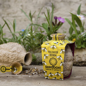 Pollinator Beebom Seedbom - stocking fillers for her