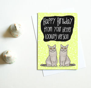 Birthday Card For Twin 'Your Better Looking Version' - birthday cards