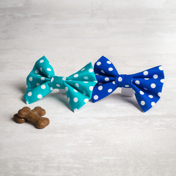 Blue Or Turquoise Dog Bow/ Bow Tie For Dogs