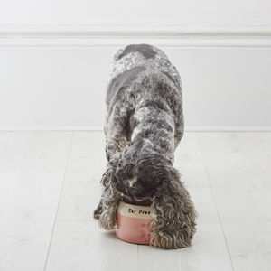 Handmade Personalised Spaniel Bowl