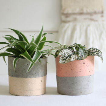 Peach Tonal Planter