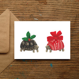 Christmas Tortoise Christmas Cards - christmas sale