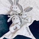 Personalised Three Little Bunnies Gift Set