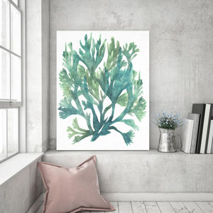 Water Coral - paintings