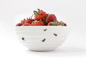 Bowl With Insects