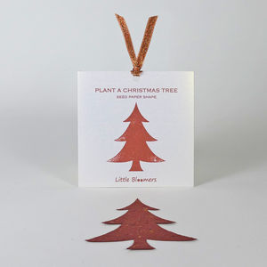 'Plant A Christmas Tree' Seed Paper Gift