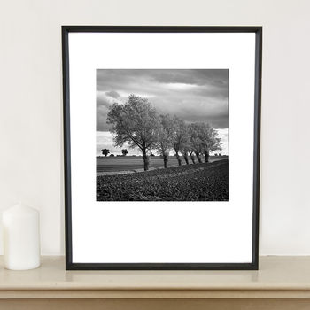Walsham Le Willows I Photographic Art Print