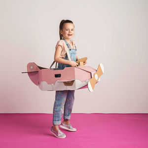 Imagination Cardboard Airplane Costume