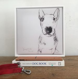 'English Bull Terrier' Framed Canvas Print