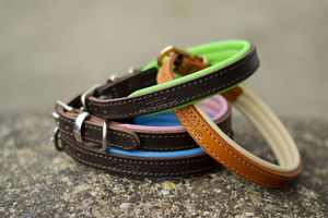 Luxury Padded Leather Dog Collar - dogs
