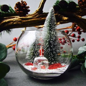 Christmas Terrarium Kit - terrariums