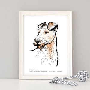 Irish Terrier Print With Personalisation - animals & wildlife