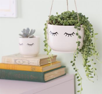 Eye Shut Planter With A Succulent