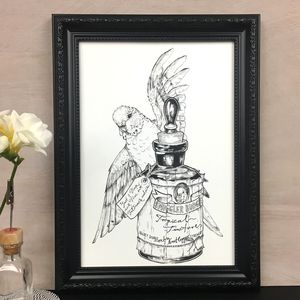 Smuggler Budgie Illustration Art Print - drawings & illustrations