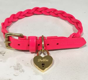 Neon Plaited Leather Dog Collar - dogs