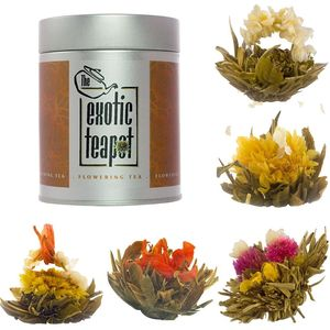 Flowering Tea Sampler Tin Five Different Blooms - teatime treats