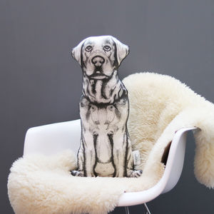 Personalised Animal 'Sofa Sculpture' Cushion