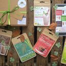 Fit Box: Superfood Protein Gift Hamper