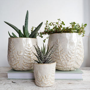 Off White Stoneware Plant Pot With Leaf Pattern - pots & planters