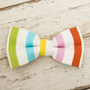 The Thurlestone Multicoloured Candy Striped Dog Bow