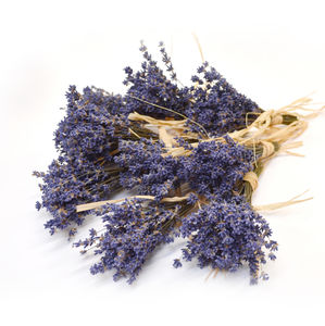 10 Or 25 Mini Lavender Bundle