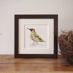 Limited Edition, Garden Bird Print, Green Woodpecker