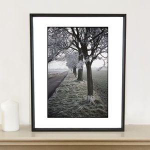 Frosty Trees, Occold, Suffolk Photographic Art Print