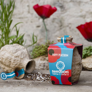 Poppy Peacebom Seedbom - garden sale
