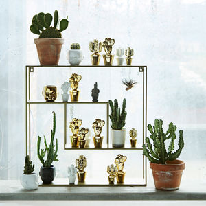 Square Brass Shelving Unit - shelves