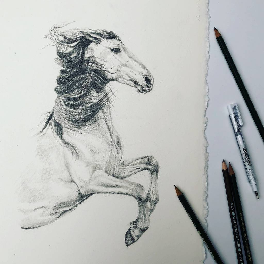 horse art | framed horse prints | horse gifts by caroline towning ...